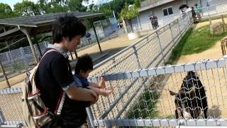 ☆天王寺動物園に行ってきました。☆
